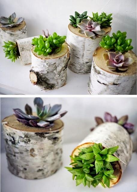 20+ Mini Jardines Originales para una Primavera Diferente