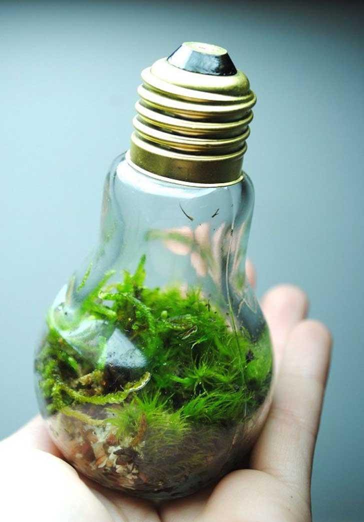 20+ Geniales Ideas para Reciclar Viejas Bombillas