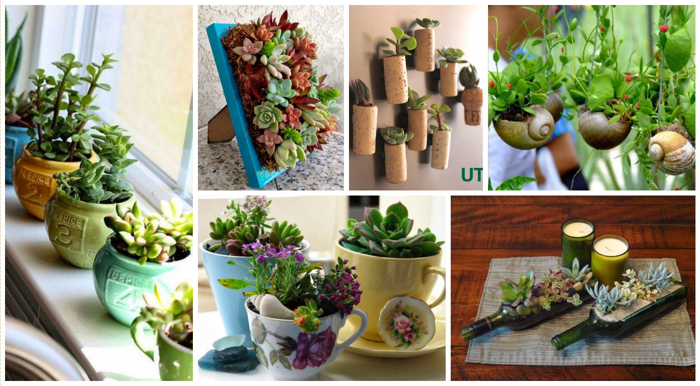 10 ideas creativas con plantas para decorar tu hogar for Decorar jardines con plantas
