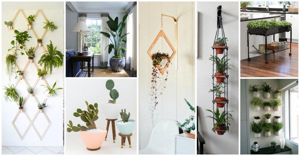 15 ideas creativas para tus jardines interiores for Ideas para jardines pequenos interiores