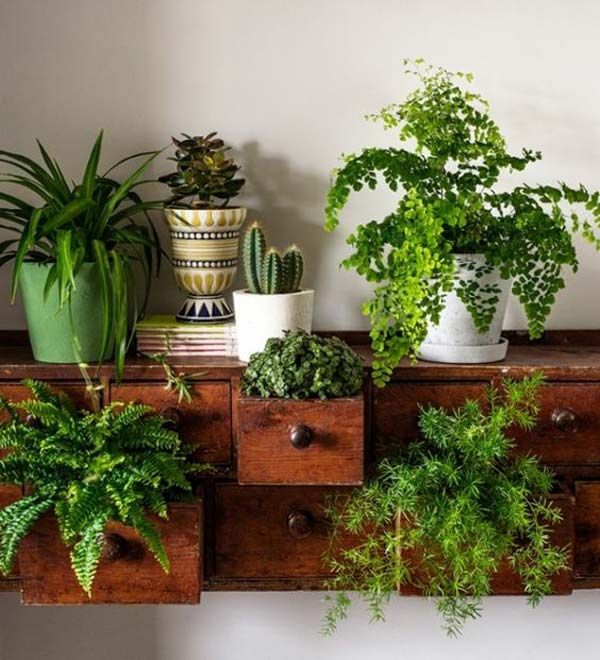 ideas-mini-jardines-9