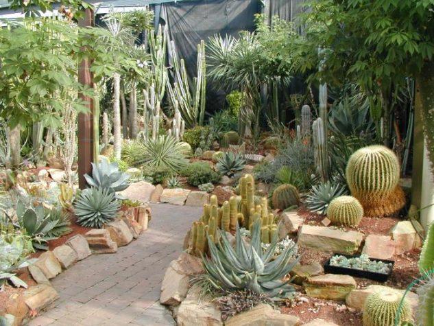 20 maravillosos jardines de cactus. Black Bedroom Furniture Sets. Home Design Ideas
