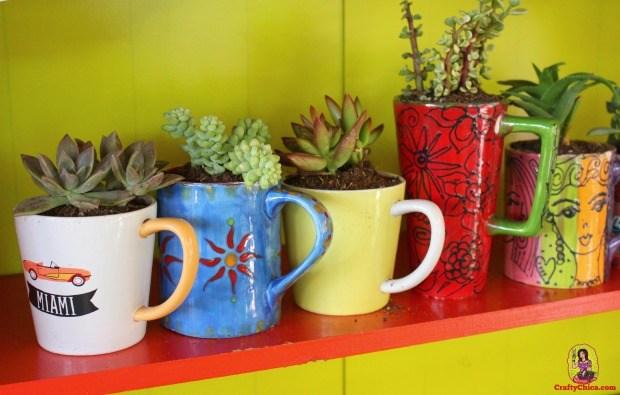 15+ Ideas de Jardines en Miniatura Mágicos en una Taza de Café