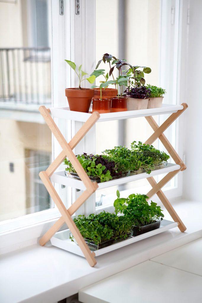 22+ Originales y Creativos Mini Jardines para Interior