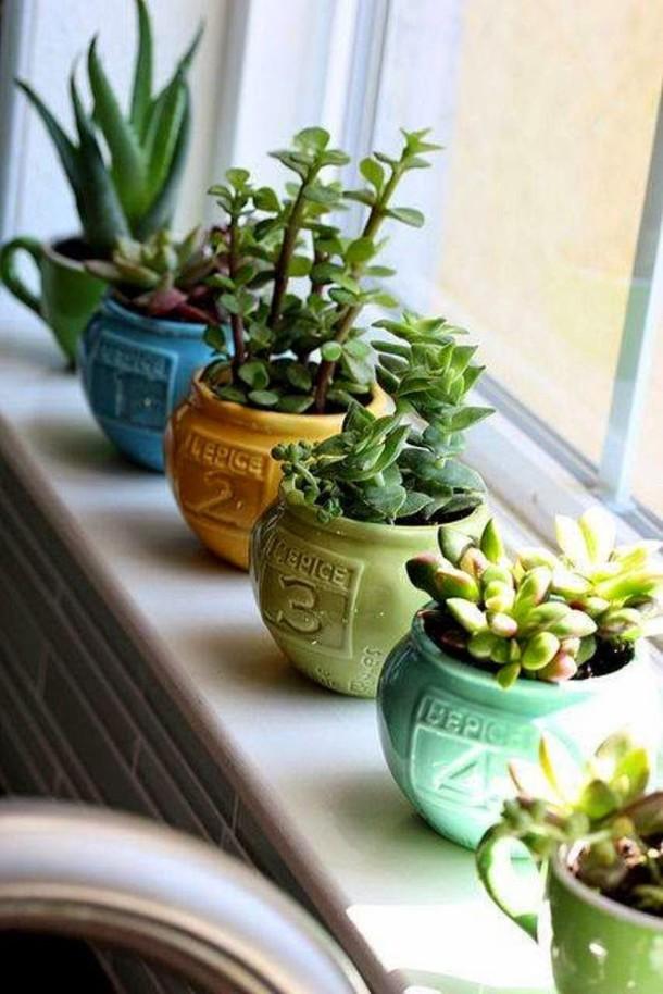 10+ Ideas Creativas Con Plantas Para Decorar Tu Hogar