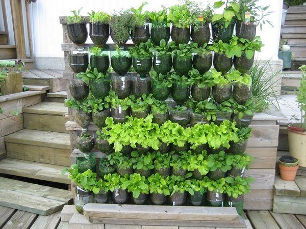 15+ Ideas Geniales para Reciclar Botellas en el Jardín